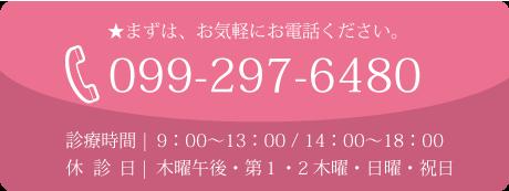 099-297-6480