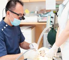 当院では、総合的に歯科治療を行うことができる標準的な技術力はすべての歯科医師が有していることは当然のことであり、弱点がある場合は標準以上になるように歯科医師の教育体制についても徹底しています。