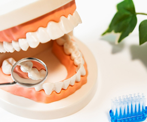 全体の噛み合わせをきちんと調整するという行為は意外と難しく、歯科医師の中でも、きちんと咬合・噛み合わせについて学んでいる先生とそうでない先生では大きな差がでてきます