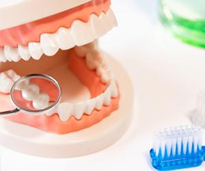 日本では、むし歯などの消極的な病気の理由がなければ、歯科にかかる習慣がありません